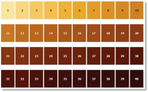 SRM beer colour chart